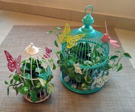 Natural indoor designs | Leah's Terrariums